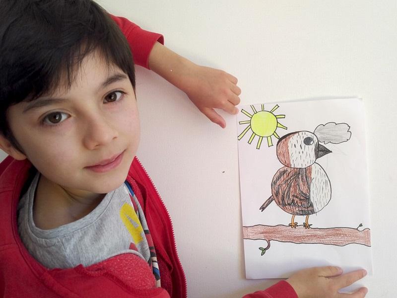 """Défi """"dessine-moi un oiseau"""" en CE"""