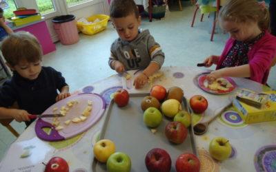 Réalisation d'une compote de pommes en maternelle et dégustation